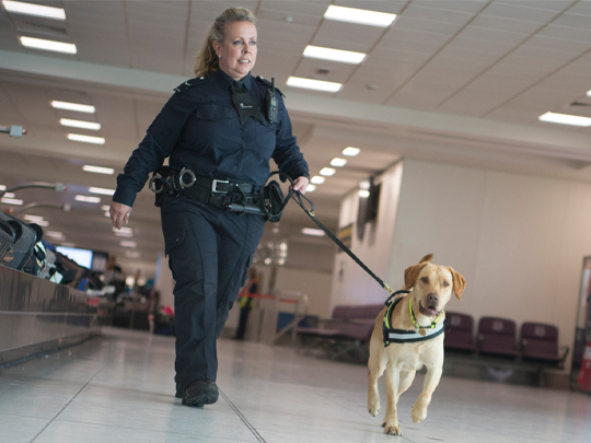 Bf Officer With Dog (1)