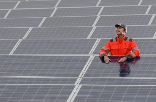 Man Standing Amongst Solar Panels