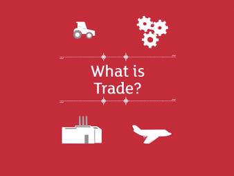 Trade Profession Graphic