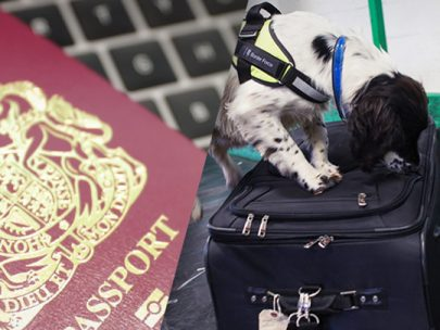 British Passport and Border Force Dog